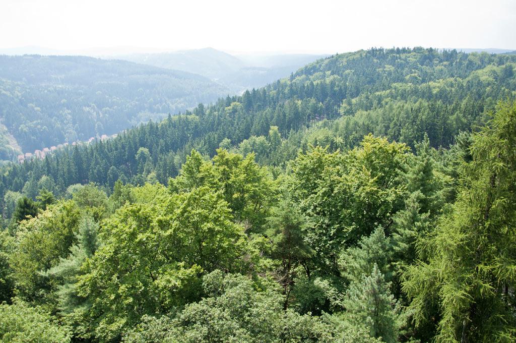 Вид на Карловы Вары и окрестности