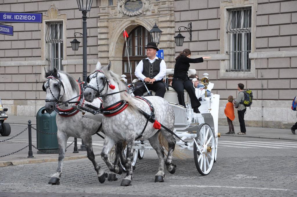 Конные экипажи в Кракове