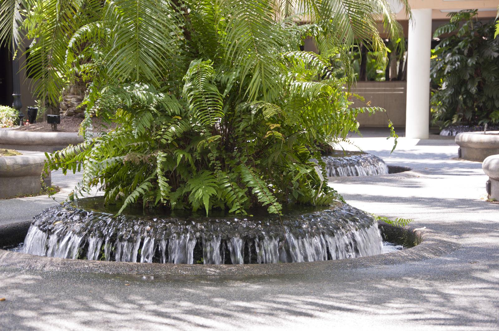 Клумба-фонтан в ботаническом саду Сингапура