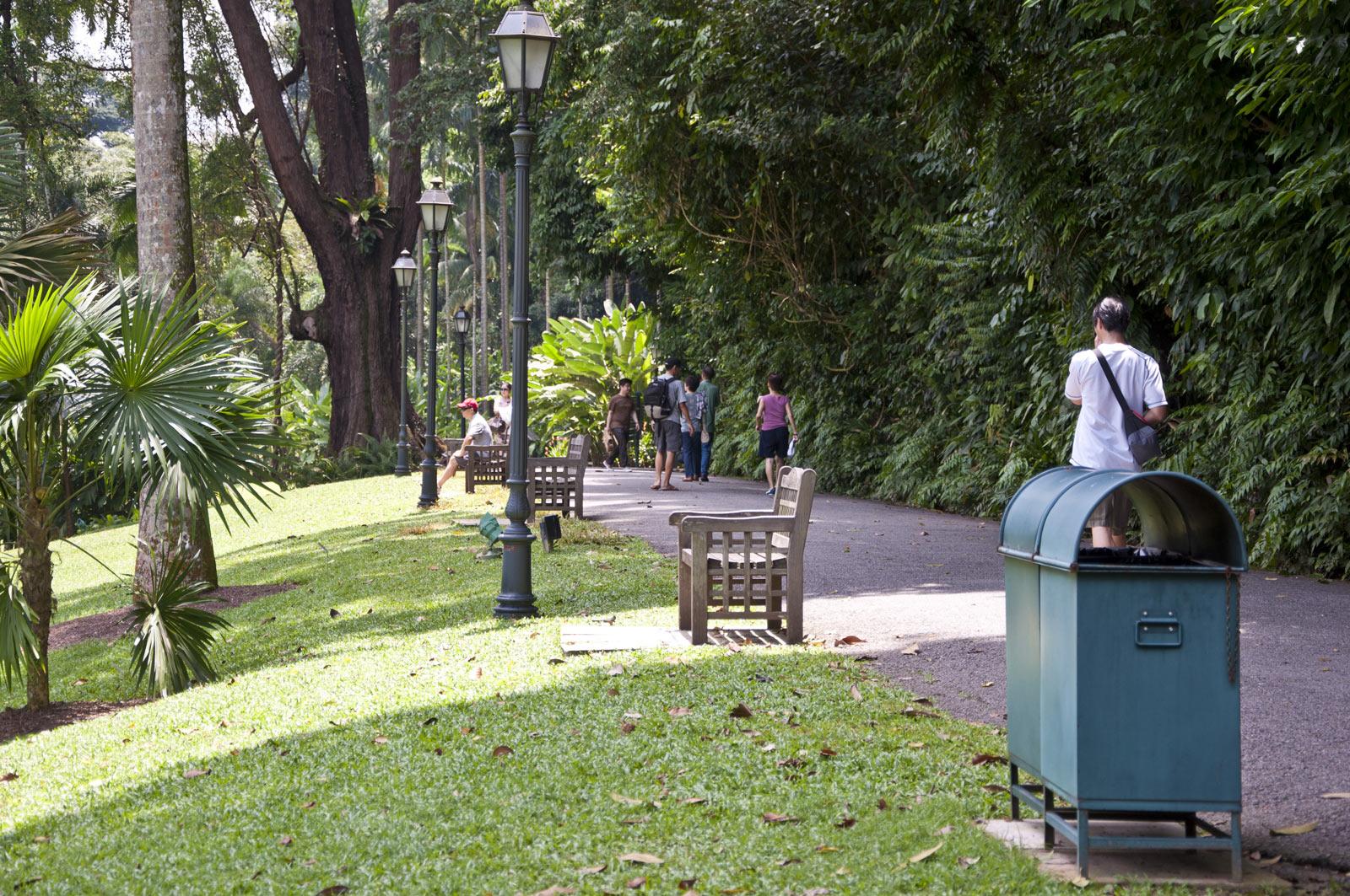 Лавочки в ботаническом саду Сингапура