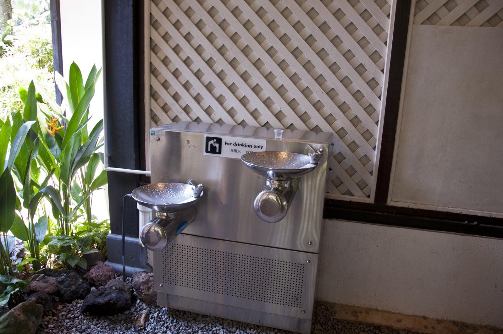 Питьевой фонтанчик в ботаническом саду Сингапура