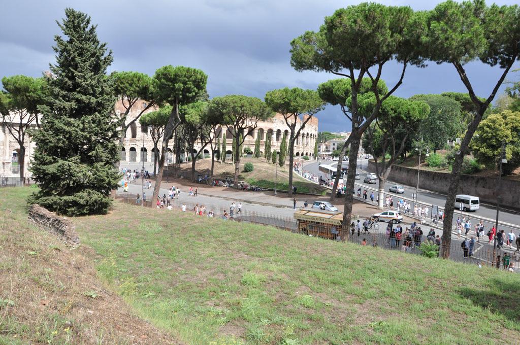 Вид с Палатинского холма на Колизей