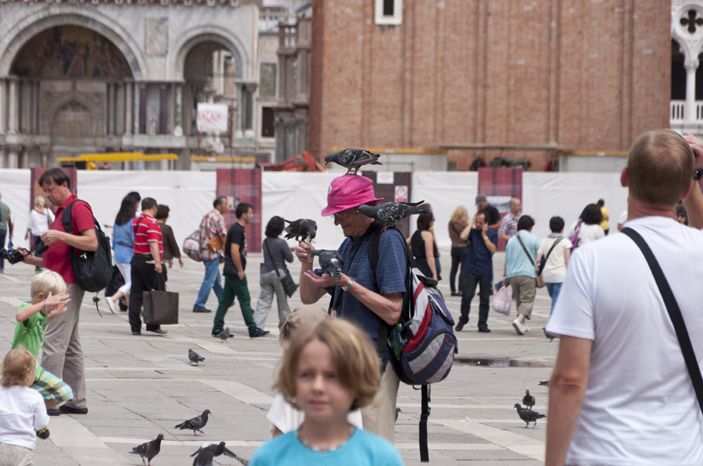 Мерзкие голуби на площади Сан-Марко